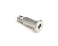 Stainless Steel Low Head Socket Shoulder Screws