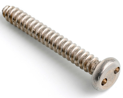 Stainless Steel 2Hole Pan Self Tapping Screws